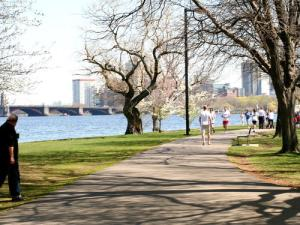 This is where I ran.  (Phote from: http://www.gogobot.com/charles-river-esplanade-boston-attraction)