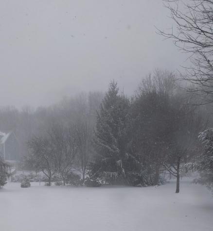 snowday314